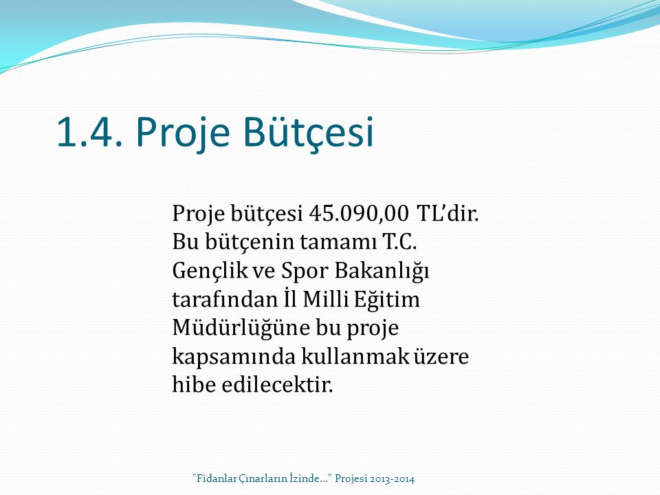 1.4. Proje Bütçesi