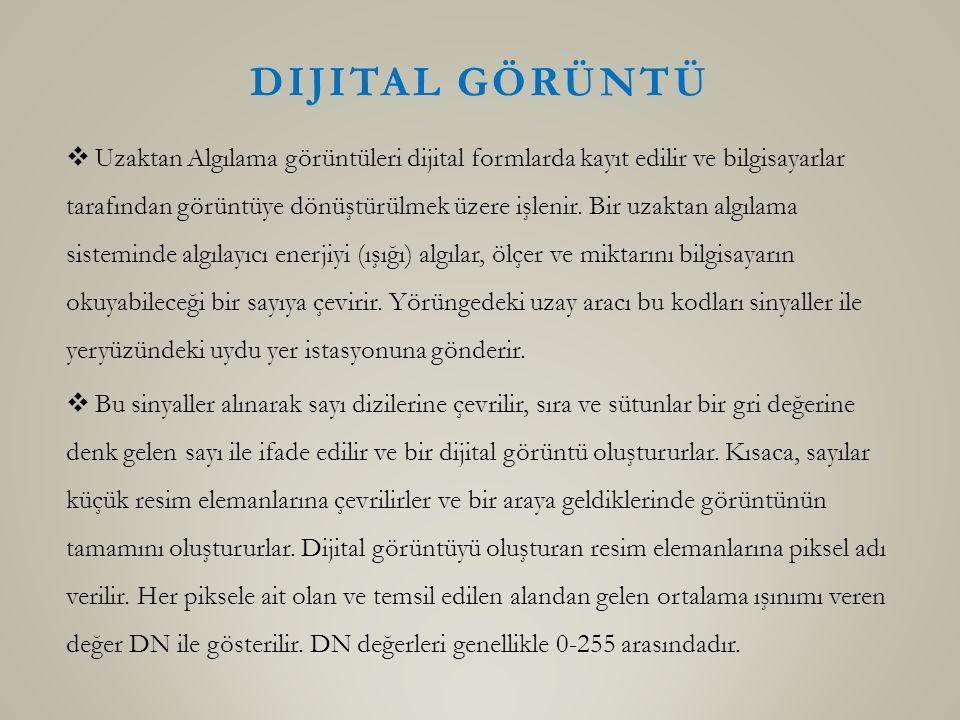 Dijital Görüntü
