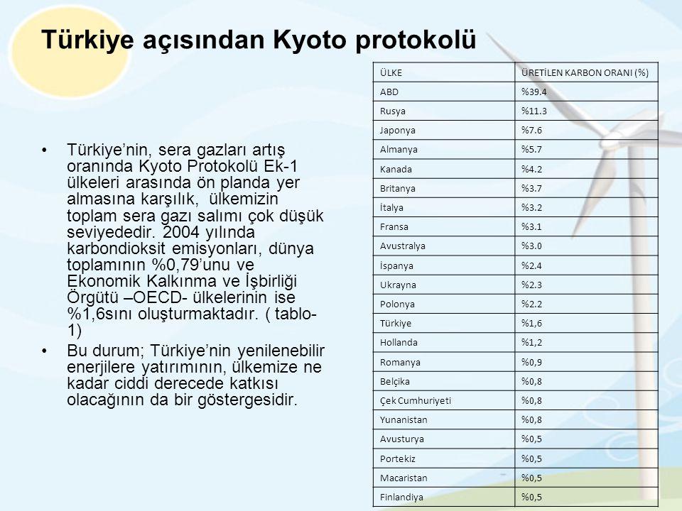 Türkiye açısından Kyoto protokolü