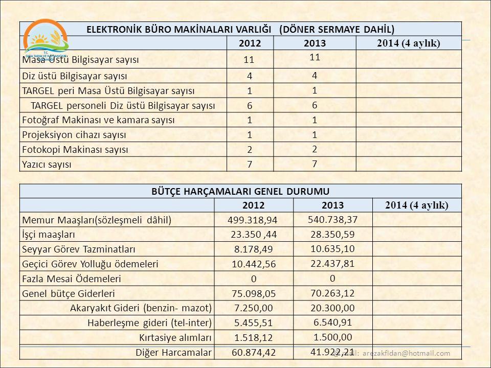 ELEKTRONİK BÜRO MAKİNALARI VARLIĞI (DÖNER SERMAYE DAHİL) 2012 2013