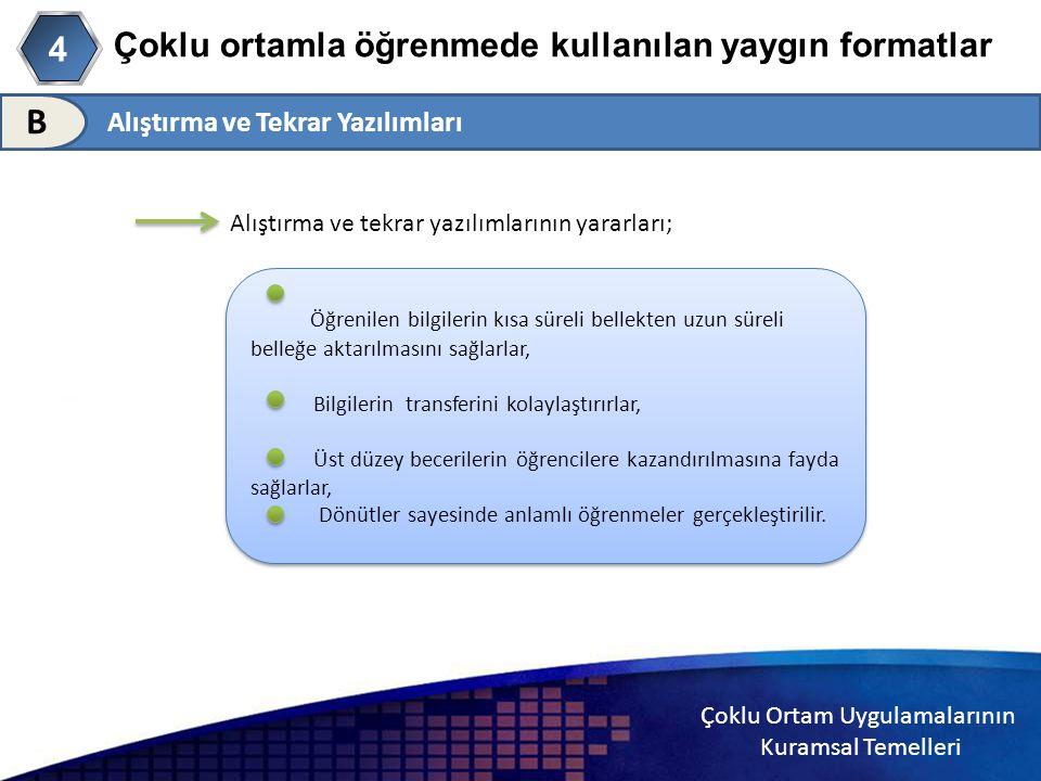 Çoklu ortamla öğrenmede kullanılan yaygın formatlar