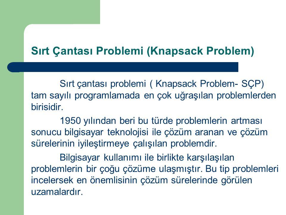 Sırt Çantası Problemi (Knapsack Problem)