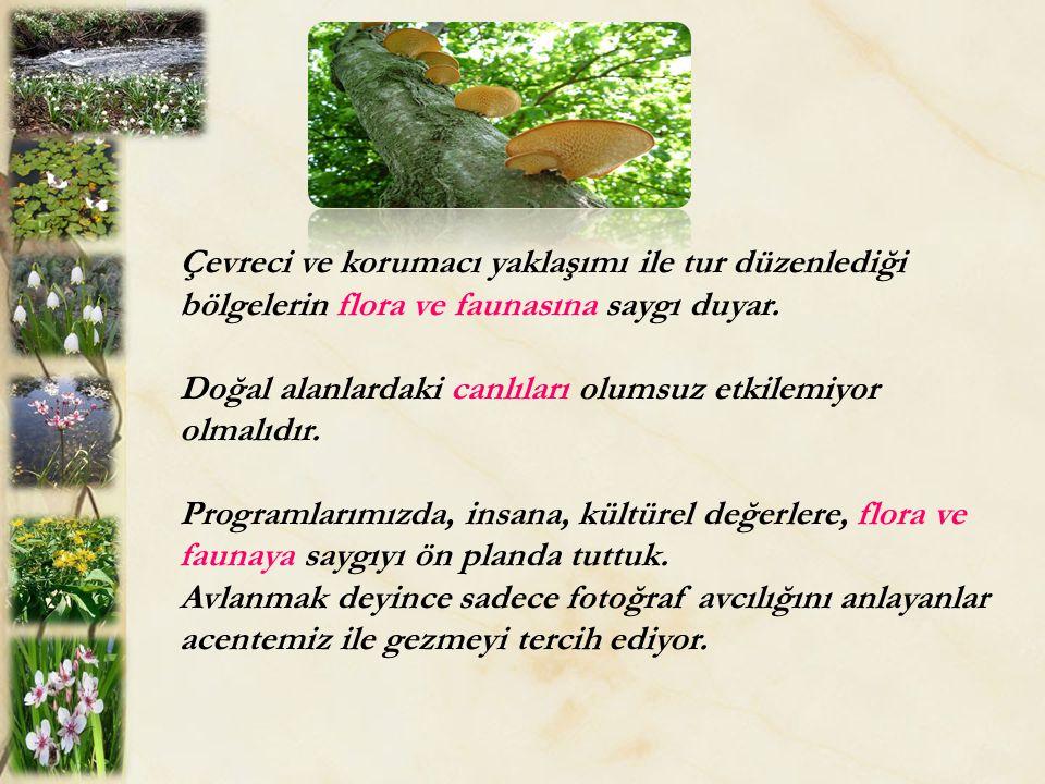 Çevreci ve korumacı yaklaşımı ile tur düzenlediği bölgelerin flora ve faunasına saygı duyar.