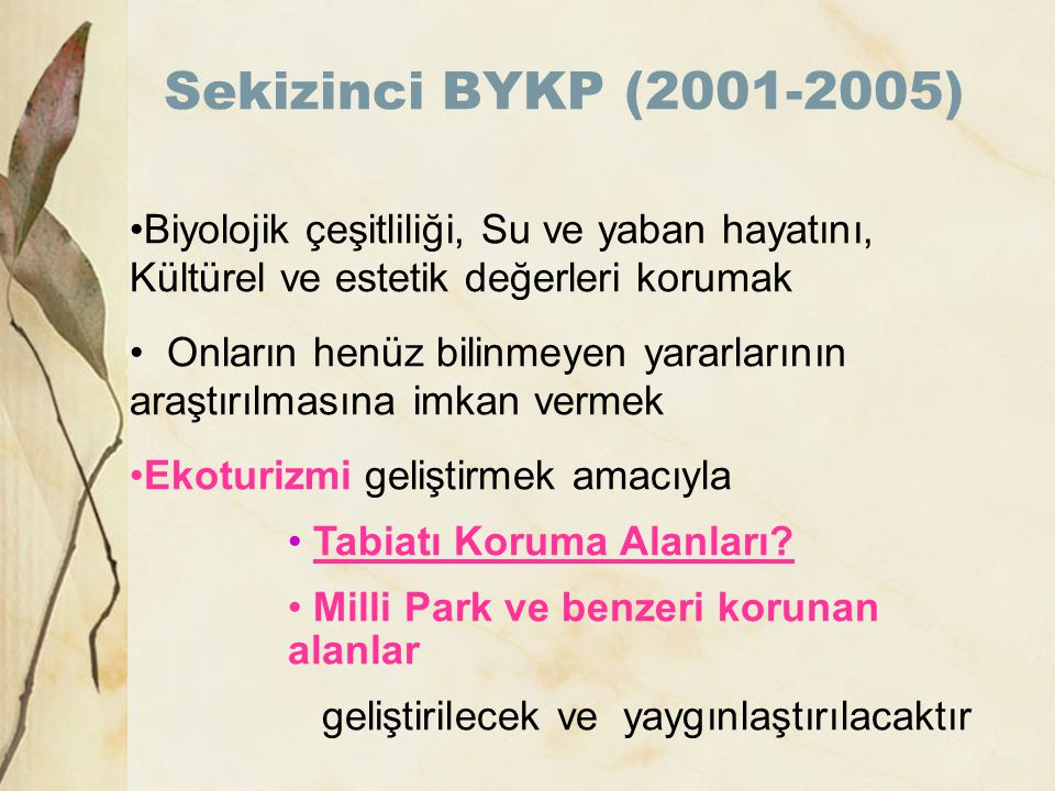 Sekizinci BYKP (2001-2005) Biyolojik çeşitliliği, Su ve yaban hayatını, Kültürel ve estetik değerleri korumak.