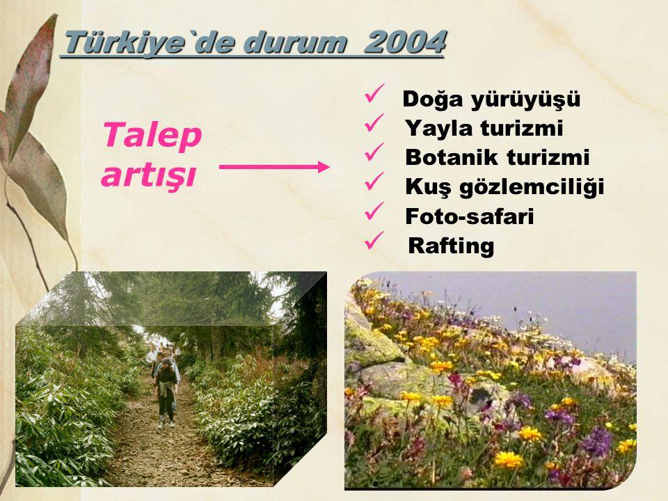 Talep artışı Türkiye`de durum 2004 Doğa yürüyüşü Yayla turizmi