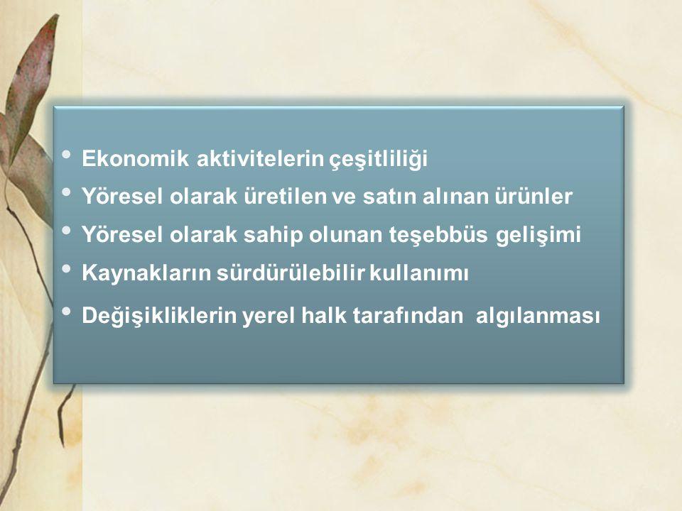 Ekonomik aktivitelerin çeşitliliği