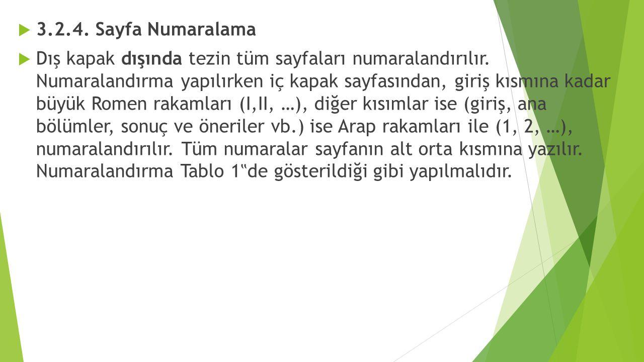 3.2.4. Sayfa Numaralama