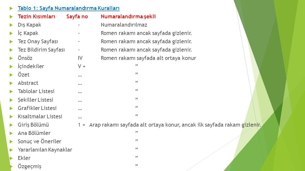 Tablo 1: Sayfa Numaralandırma Kuralları