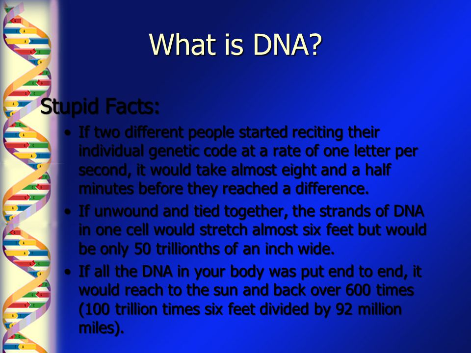 What is DNA Stupid Facts: