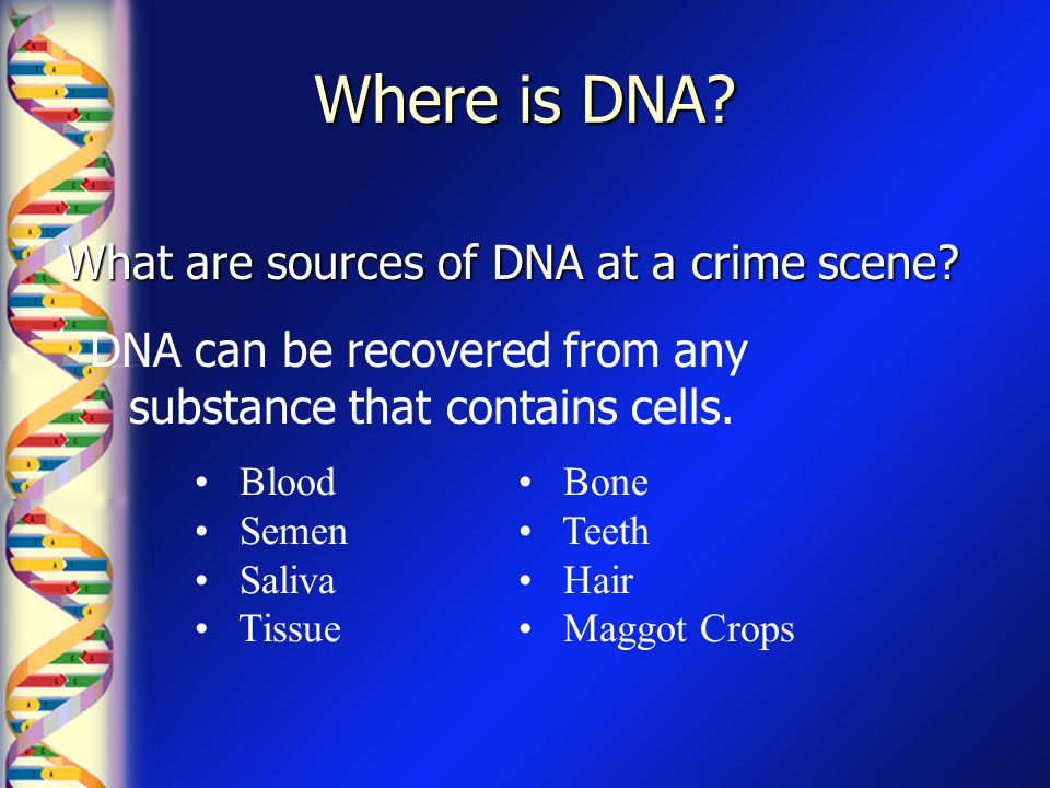 Where is DNA What are sources of DNA at a crime scene