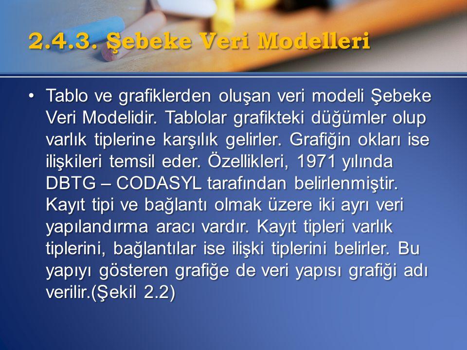 2.4.3. Şebeke Veri Modelleri