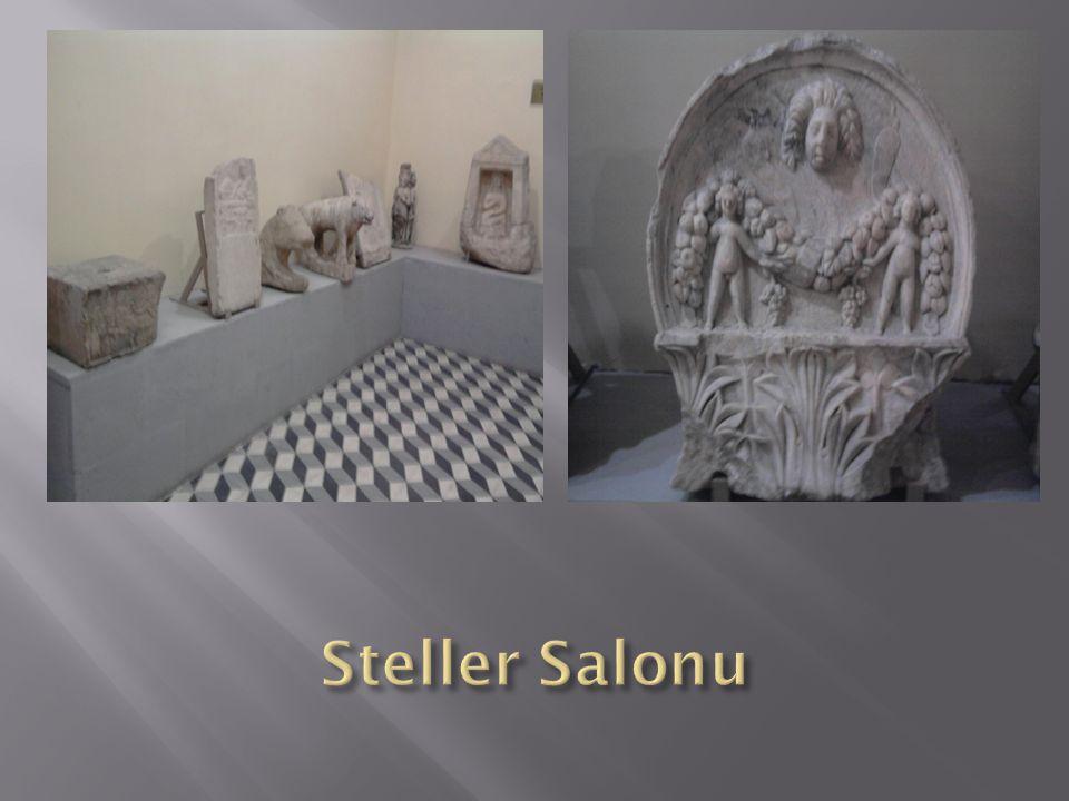 Steller Salonu