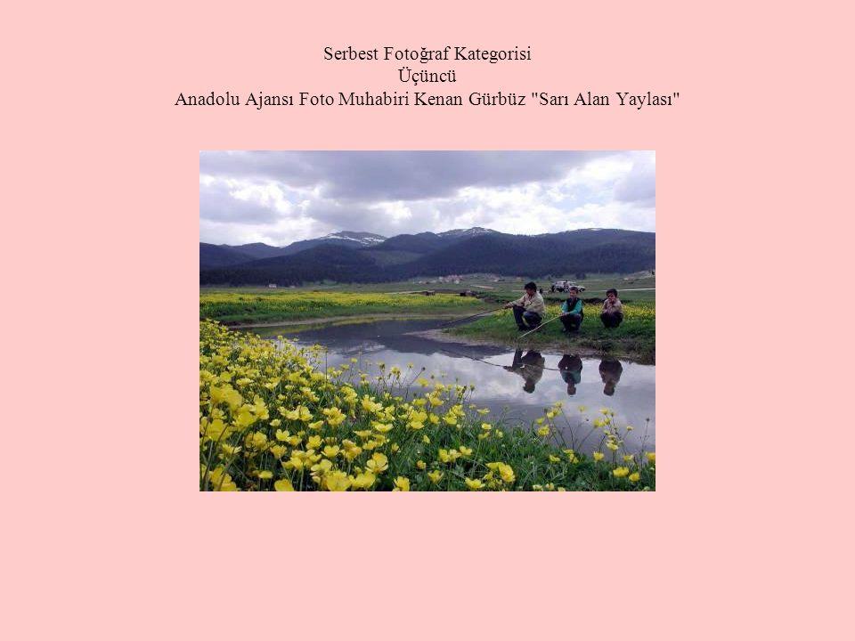 Serbest Fotoğraf Kategorisi Üçüncü Anadolu Ajansı Foto Muhabiri Kenan Gürbüz Sarı Alan Yaylası
