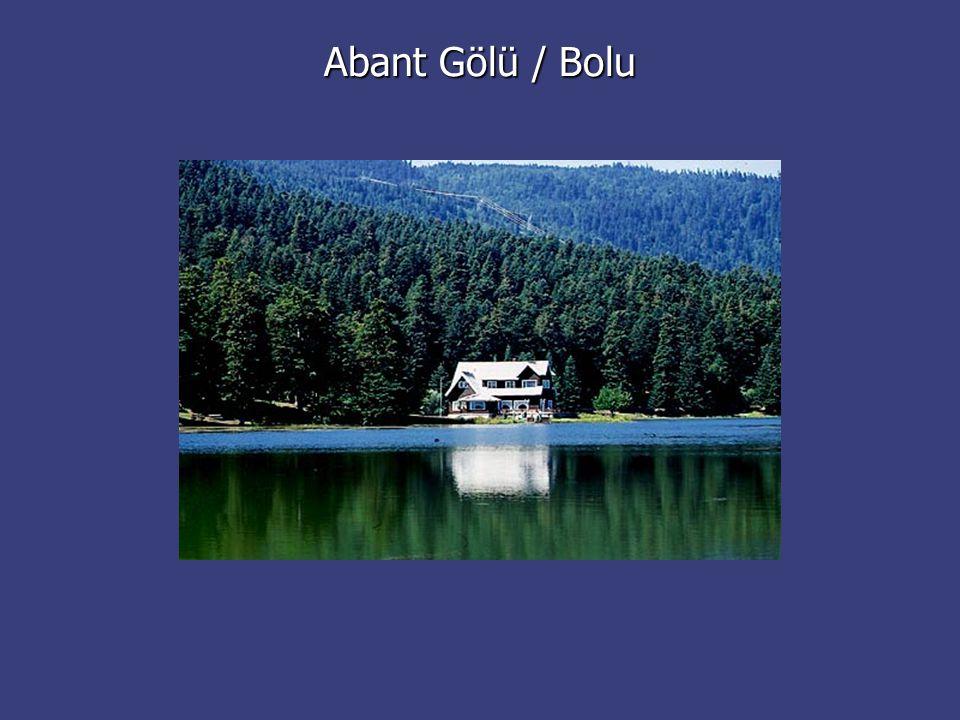 Abant Gölü / Bolu