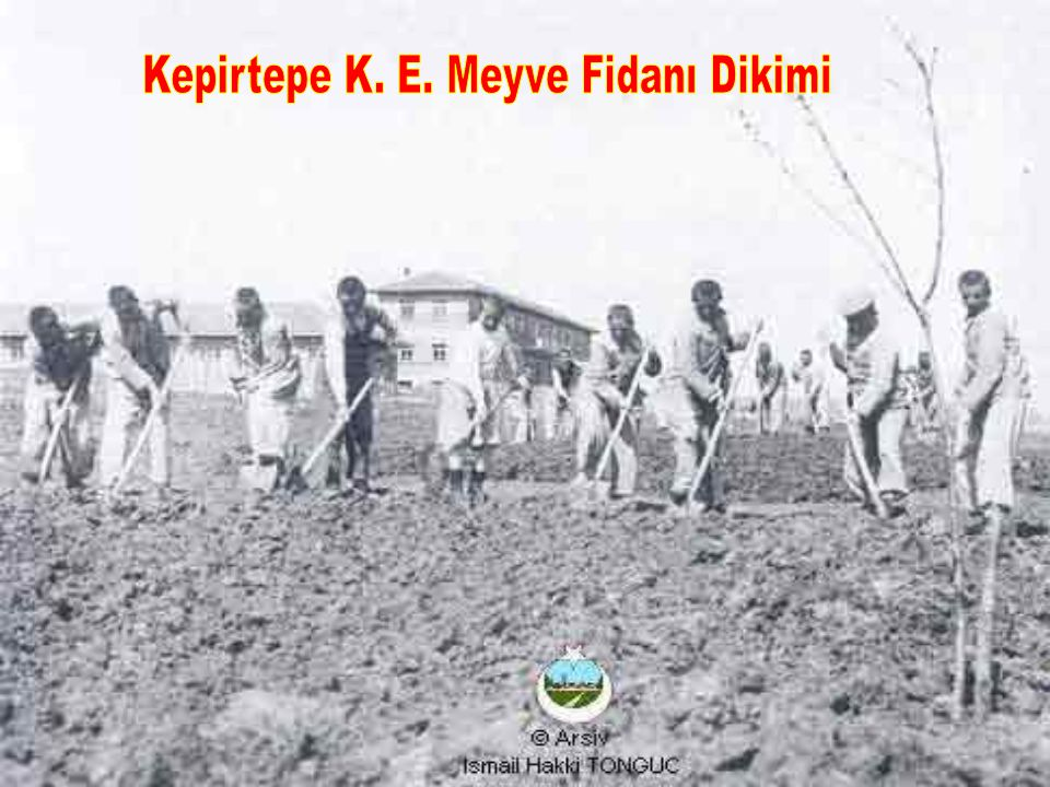 Kepirtepe K. E. Meyve Fidanı Dikimi