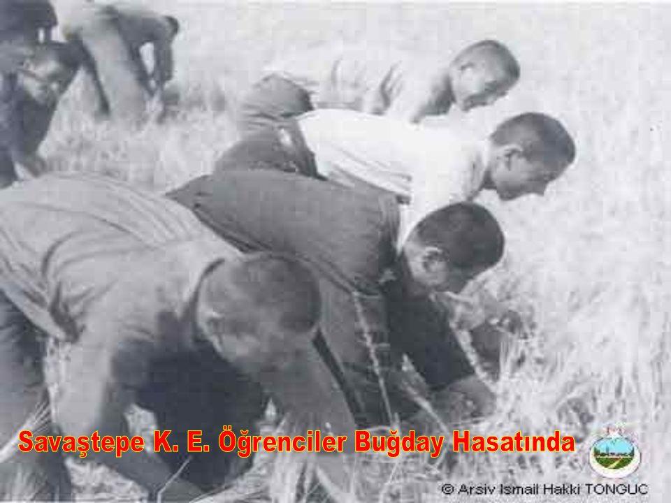 Savaştepe K. E. Öğrenciler Buğday Hasatında