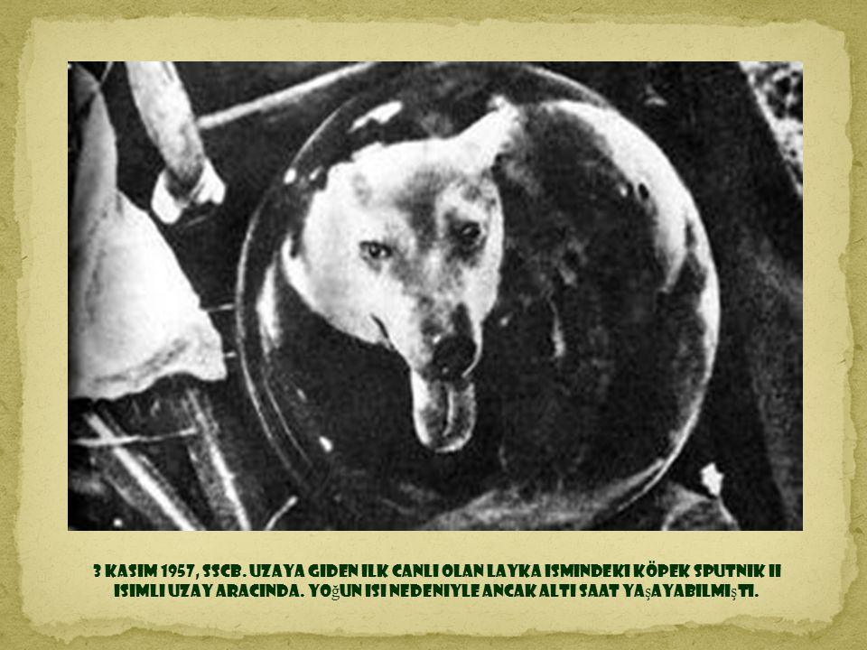 3 Kasım 1957, SSCB.