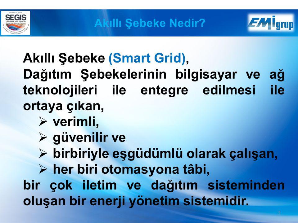 Akıllı Şebeke (Smart Grid),