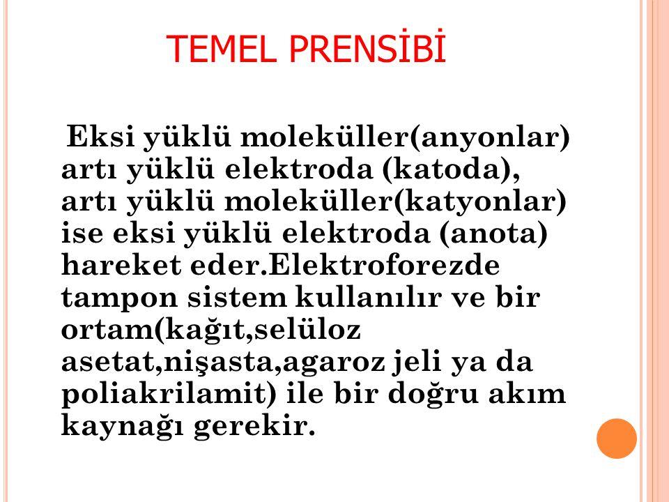 TEMEL PRENSİBİ