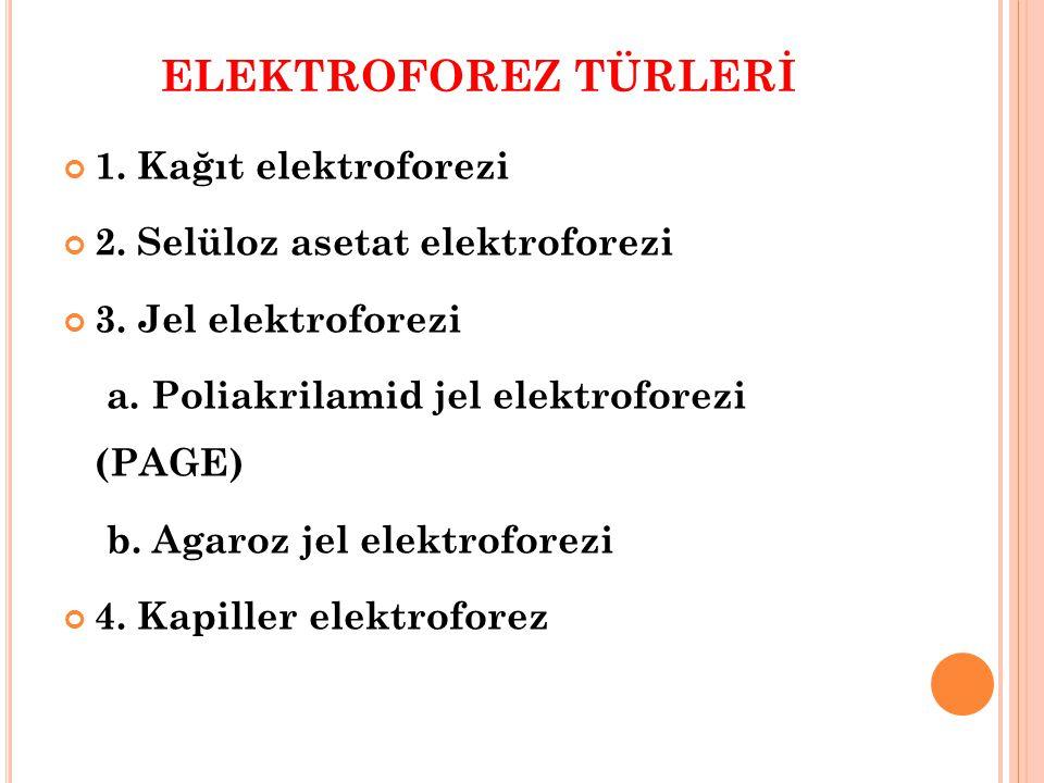 ELEKTROFOREZ TÜRLERİ 1. Kağıt elektroforezi
