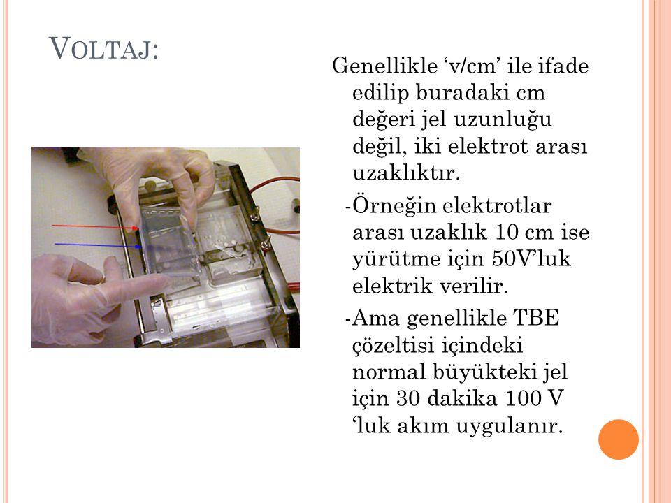 Voltaj: Genellikle 'v/cm' ile ifade edilip buradaki cm değeri jel uzunluğu değil, iki elektrot arası uzaklıktır.