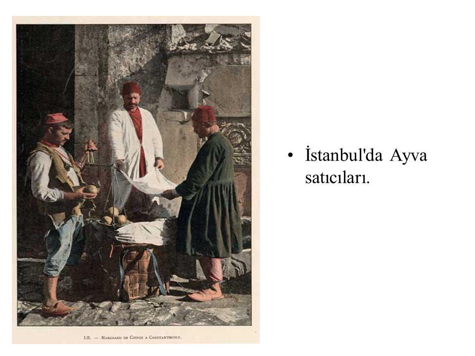 İstanbul da Ayva satıcıları.