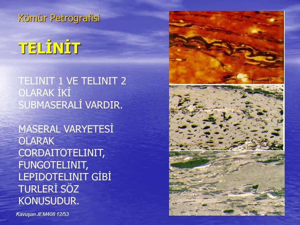 TELİNİT Kömür Petrografisi