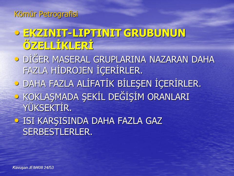 EKZINIT-LIPTINIT GRUBUNUN ÖZELLİKLERİ