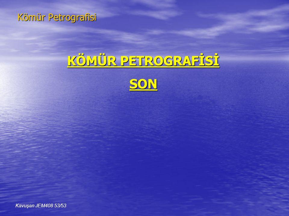 KÖMÜR PETROGRAFİSİ SON