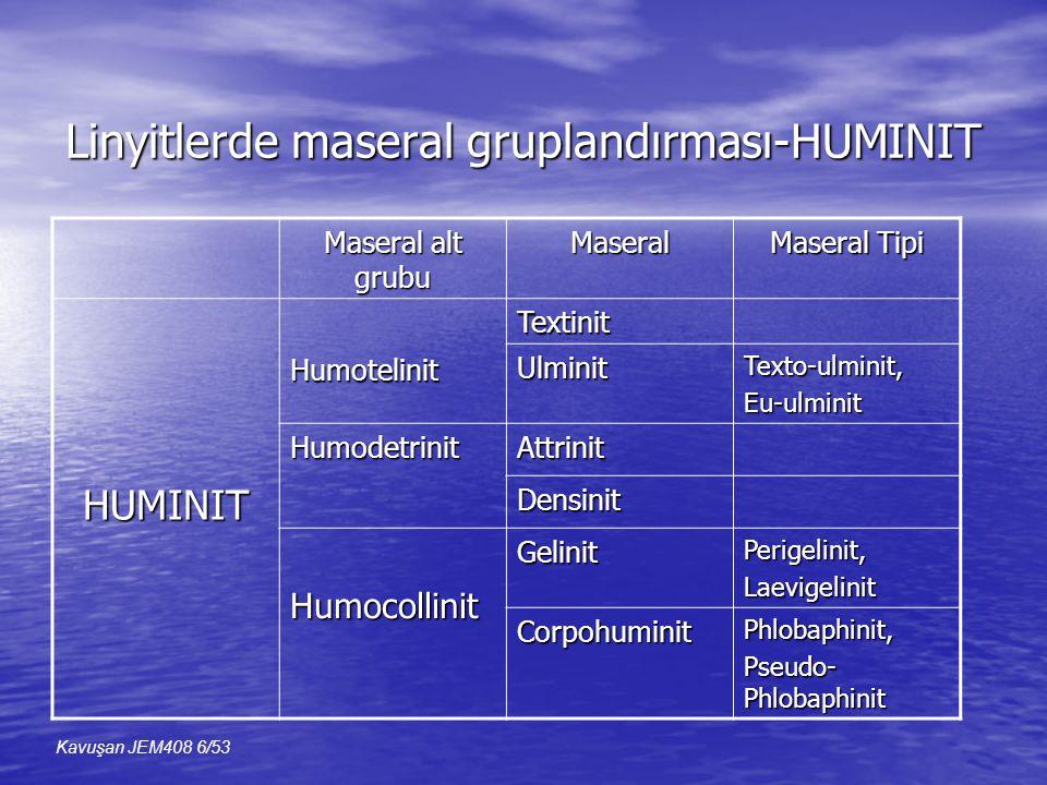 Linyitlerde maseral gruplandırması-HUMINIT