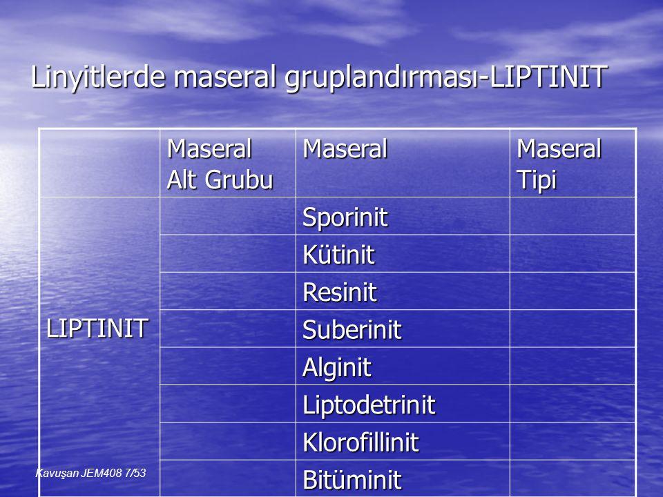 Linyitlerde maseral gruplandırması-LIPTINIT