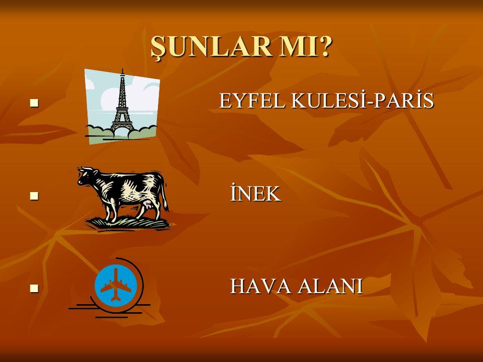 ŞUNLAR MI EYFEL KULESİ-PARİS İNEK HAVA ALANI