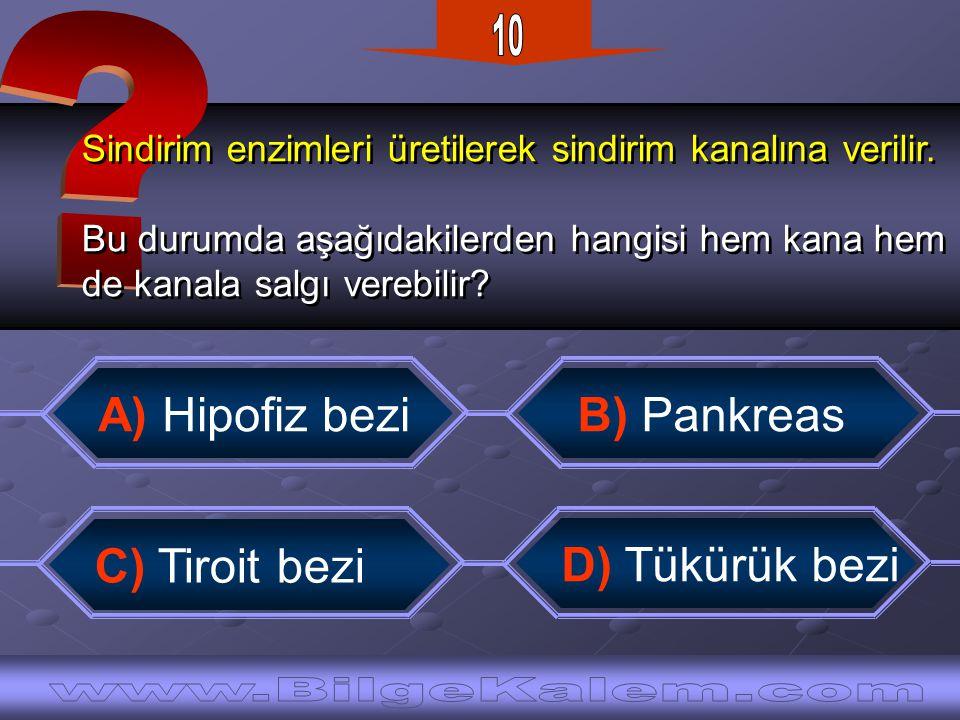 10 A) Hipofiz bezi B) Pankreas