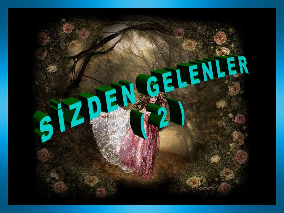 SİZDEN GELENLER ( 2 )