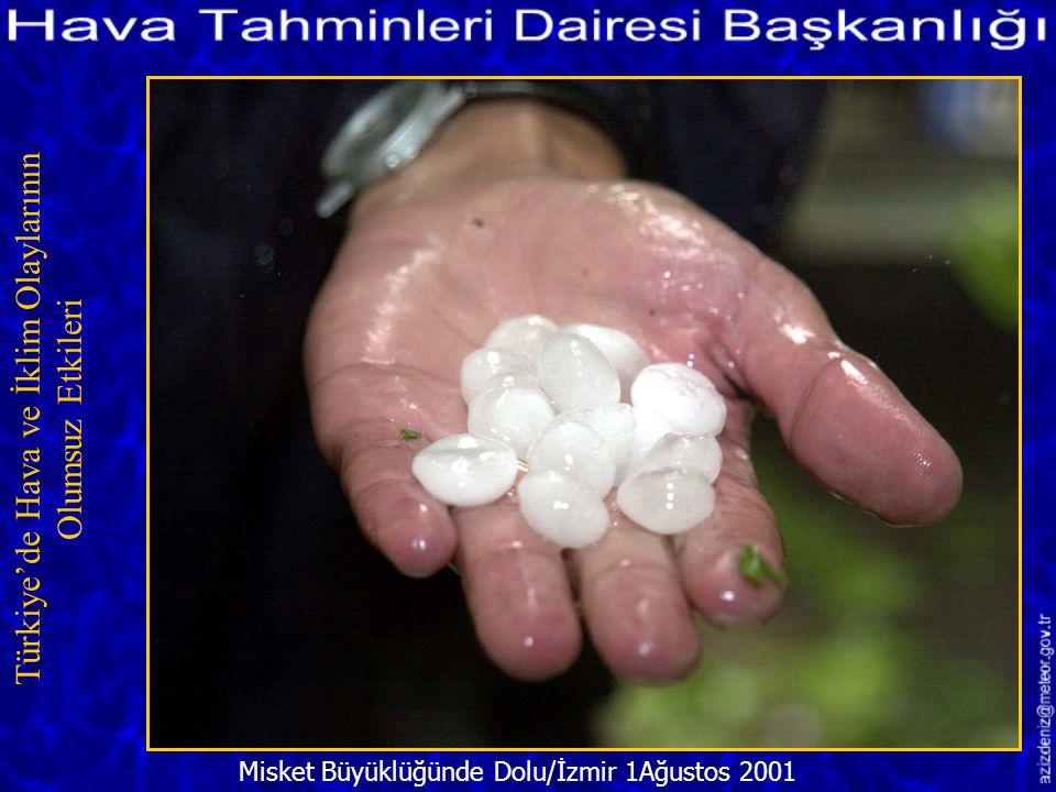 Türkiye'de Hava ve İklim Olaylarının