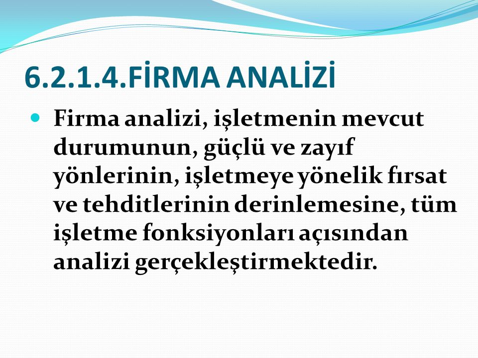 6.2.1.4.FİRMA ANALİZİ