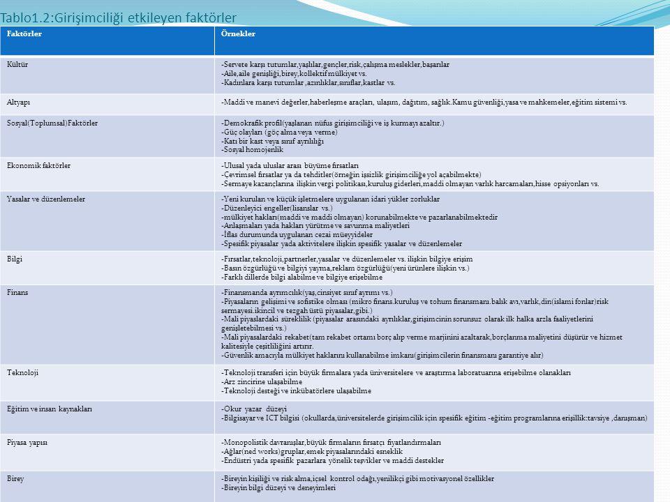 Tablo1.2:Girişimciliği etkileyen faktörler