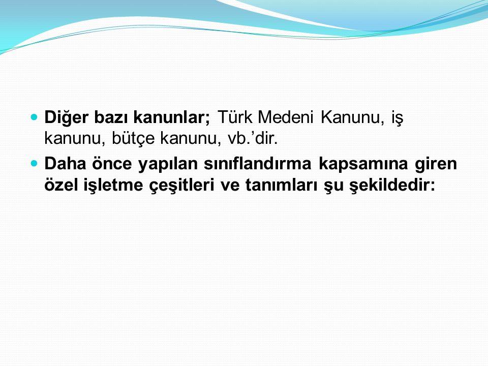 Diğer bazı kanunlar; Türk Medeni Kanunu, iş kanunu, bütçe kanunu, vb