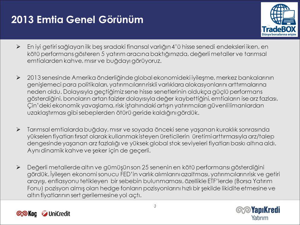 2013 Emtia Genel Görünüm