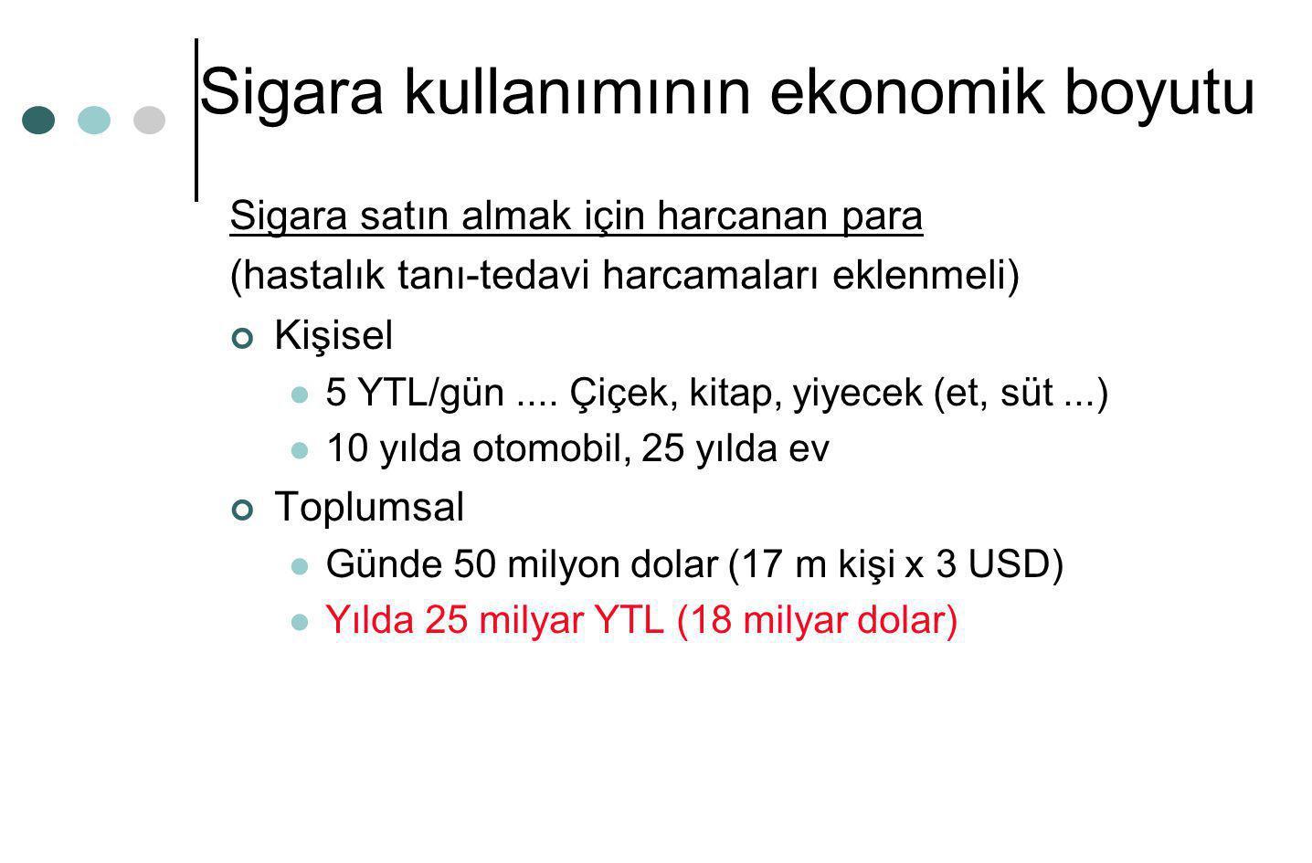 Sigara kullanımının ekonomik boyutu
