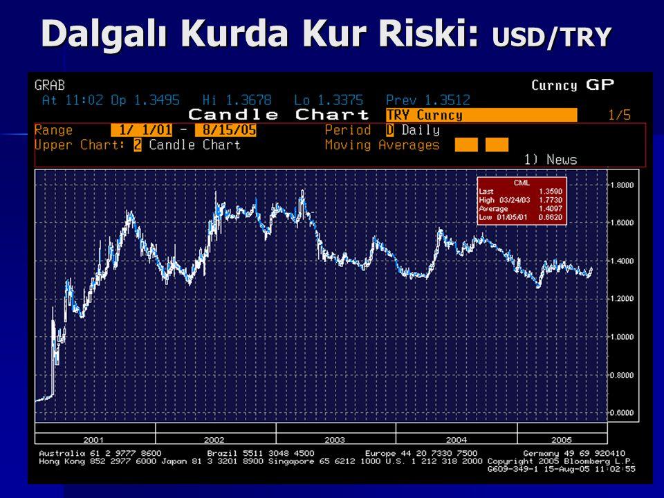 Dalgalı Kurda Kur Riski: USD/TRY