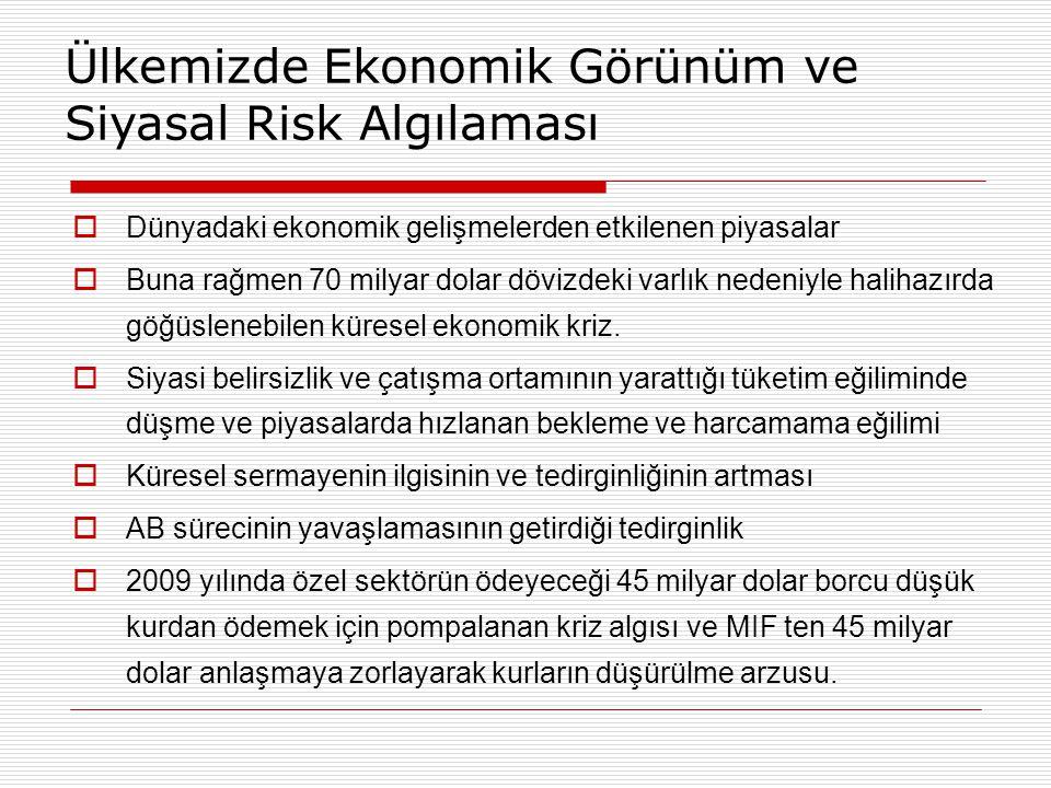 Ülkemizde Ekonomik Görünüm ve Siyasal Risk Algılaması