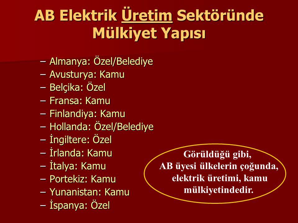 AB Elektrik Üretim Sektöründe Mülkiyet Yapısı