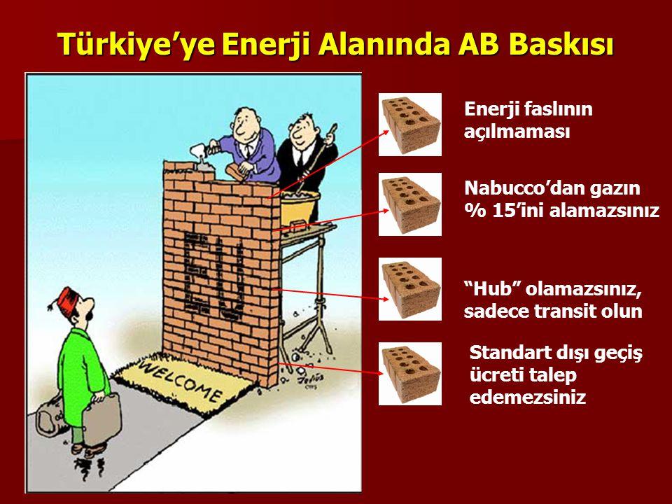 Türkiye'ye Enerji Alanında AB Baskısı