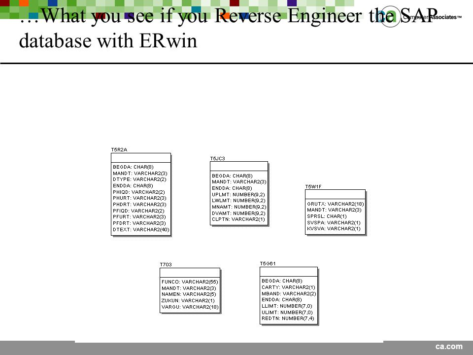 …What you see if you Reverse Engineer the SAP database with ERwin