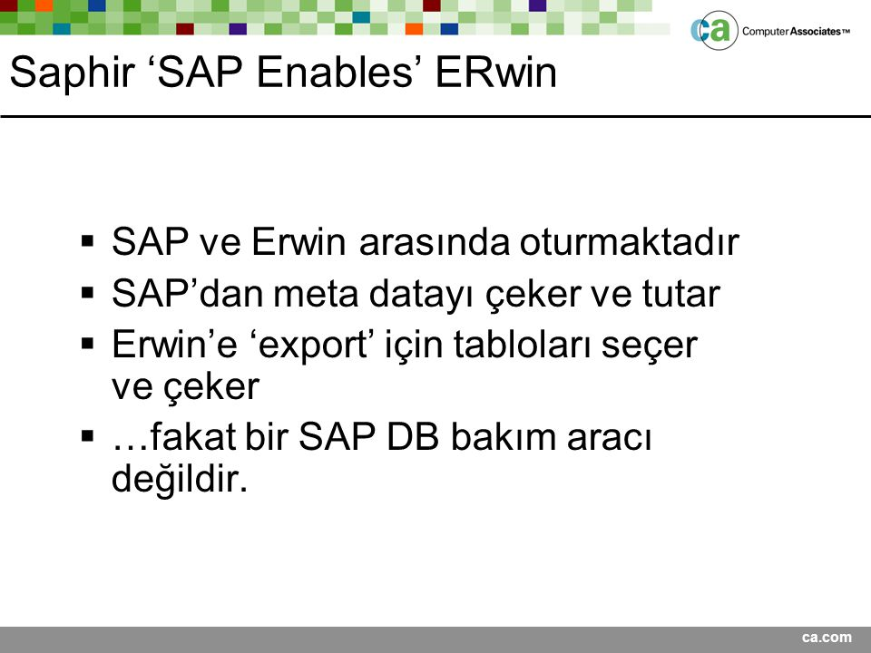 Saphir 'SAP Enables' ERwin