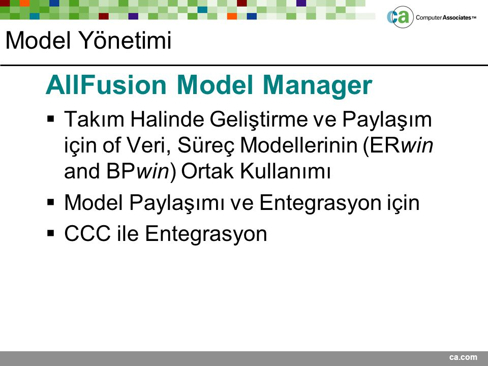 AllFusion Model Manager