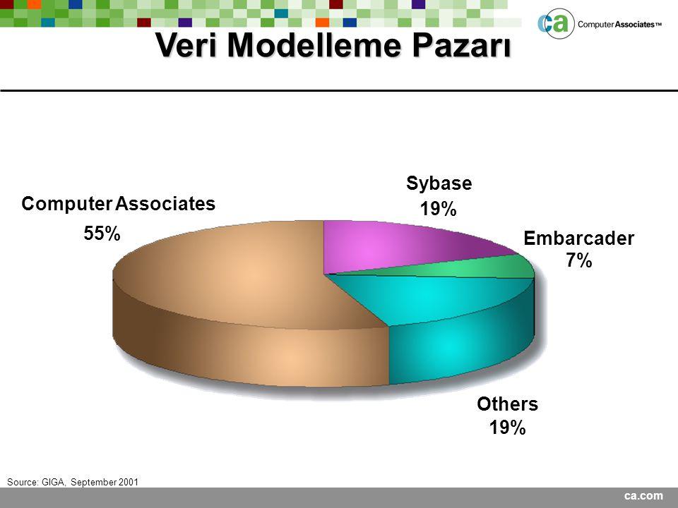 Veri Modelleme Pazarı Sybase Computer Associates 19% 55% Embarcader 7%