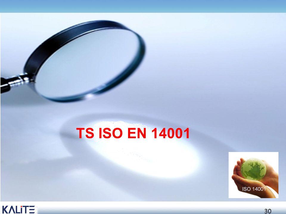 TS ISO EN 14001