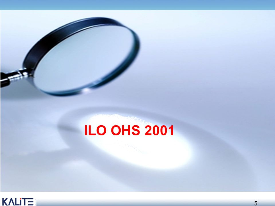 ILO OHS 2001